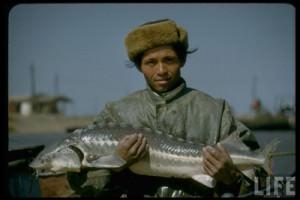 Меры регулирования рыболовства