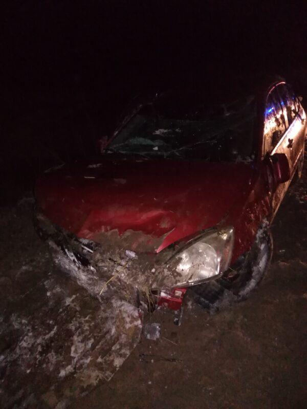 На трассе Иваново-Кинешма машина перевернулась из-за выскочившей собаки