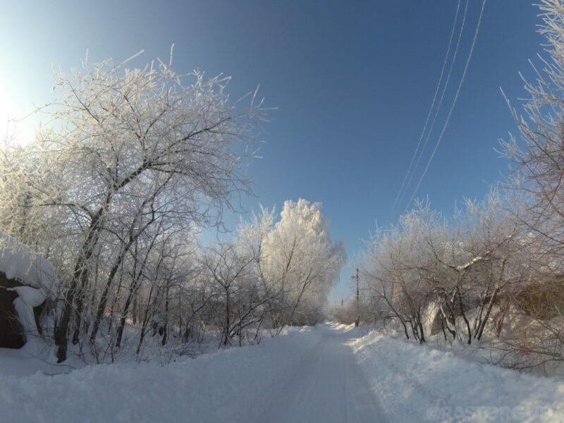 Природы зимней волшебство (фотозарисовки)