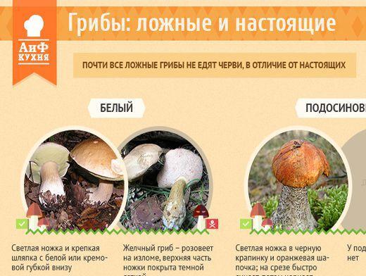 В Ивановской области зарегистрирован случай отравления грибами