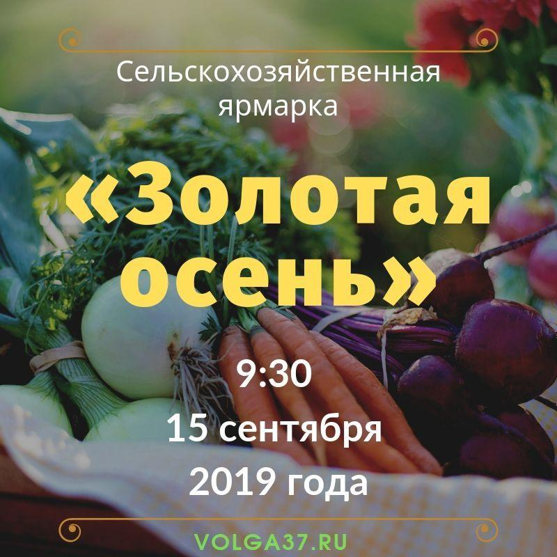 Сельскохозяйственная ярмарка «Золотая осень 2019»