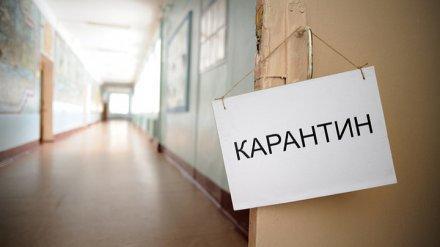 Классы в школах города закрыты на карантин