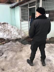 13 суток ареста - за неоплаченный вовремя административный штраф